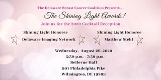 Shining Light Award_Web_Banners